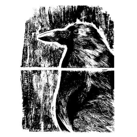 ssuthreads-adriana-portobanco-raven-blog